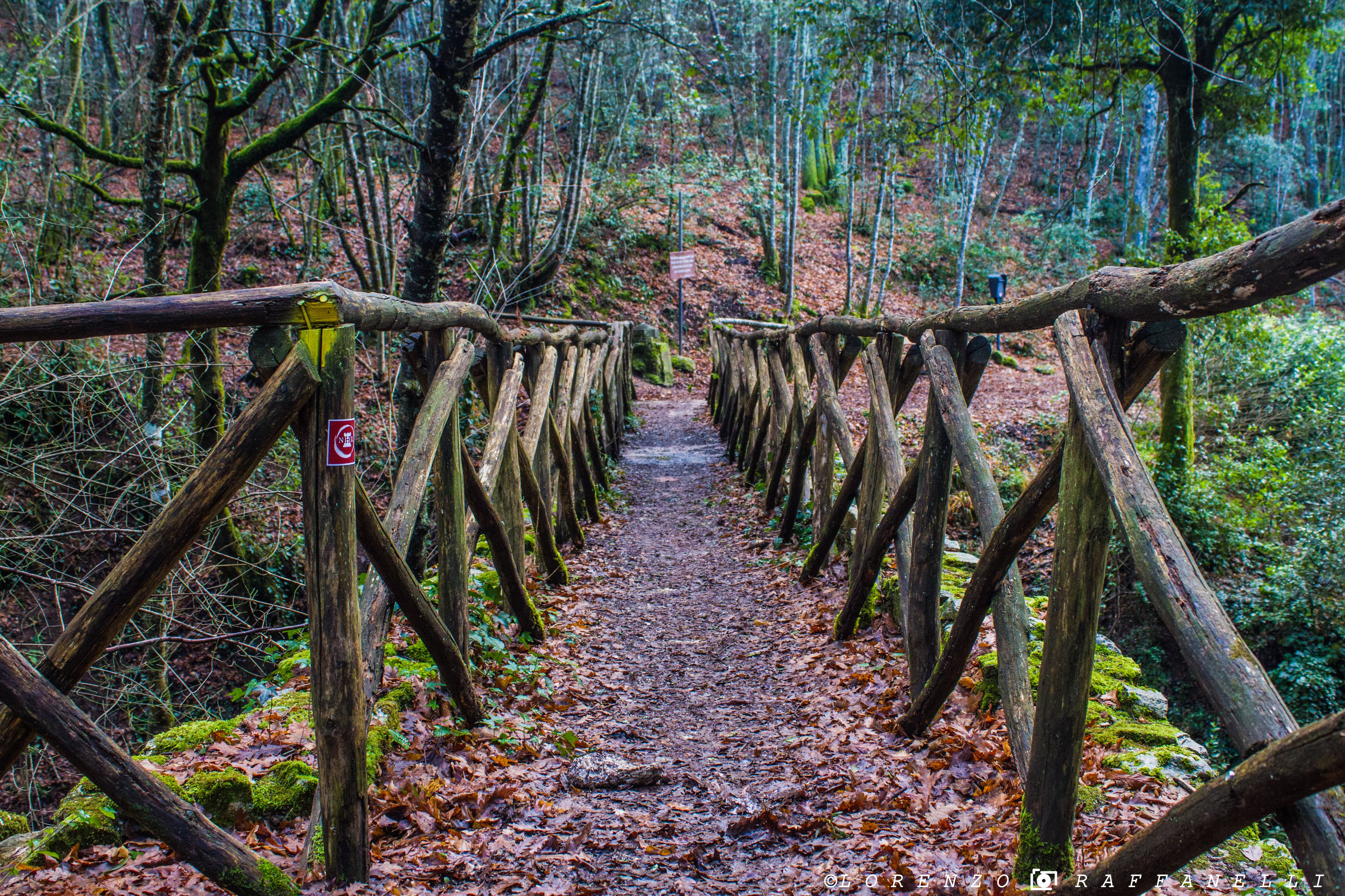 """""""Antiche vie"""" Soft trek lungo i sentieri"""